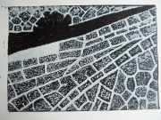 4-Damaged-wing-lino-cut-30x42-Astrid-MG-Rubie-2006