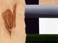 35 Overvecht 35 H 36,5 x B 27 acryl op  berken paneel Astrid MG Rubie 2016 Private collection Utrecht