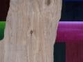 20 Overvecht 20  42,5 x 36,5 cm Acrylic on wood Astrid M G Rubie 2011